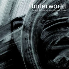 Underworld - Barbara Barbara We Face.. ( 1 VINYL ) - Muzica Drum and Bass