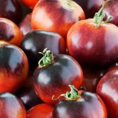 Rosii negre mici 10 seminte - Seminte rosii