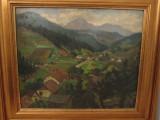 PAUL CONSTANTINESCU-PEISAJ LANGA CALIMANESTI, Peisaje, Ulei, Altul