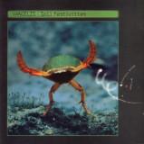 Vangelis - Soil Festivities ( 1 CD )