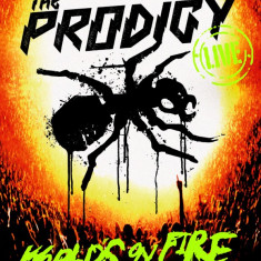 Prodigy - Live World's On Fire ( 1 DVD + 1 CD ) - Muzica Drum and Bass