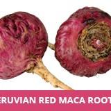 Seminte rare de ginseng peruvian -Maca rosie - 3 seminte pt semanat