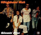 Wishbone Ash - Blowin' Free ( 2 CD )