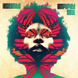 Incognito - Amplified Soul ( 2 VINYL )
