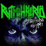 Rytmihairo - Todellisuuden Mestari ( 1 VINYL ) - Muzica Pop