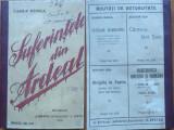 Vasile Stoica , Suferintele din Ardeal , 1916 , editia 1