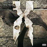 DMX - And Then There Was X ( 2 VINYL ) - Muzica Hip Hop