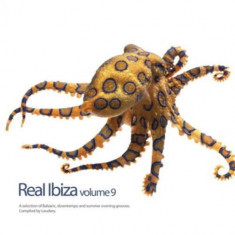 V/A - Real Ibiza V.9 ( 1 CD ) - Muzica House