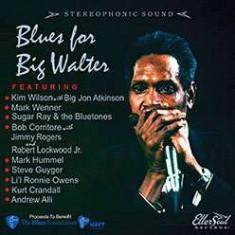 V/A - Blues For Big Walter ( 1 CD ) - Muzica Blues