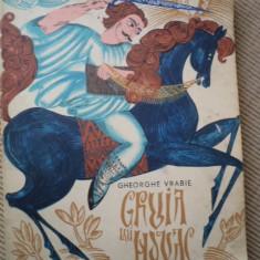 Gruia lui Novac Gheorghe Vrabie carte povesti copii hobby ilustrata desene - Carte de povesti