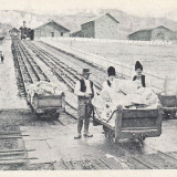 SLANIC PRAHOVA, SALINA, PLANUL INCLINAT, MOARA DE MACINAT SARE - Carte Postala Muntenia 1904-1918, Necirculata, Printata