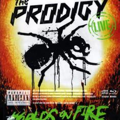 Prodigy - Live World's On Fire ( 1 BLU-RAY + 1 CD ) - Muzica Hip Hop