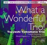 Tsuyoshi Yamamoto - What a Wonderful Trio! ( 1 DXD )
