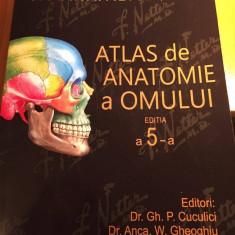 Atlas de Anatomie a Omului F.H. Netter editia a 5-a Romana