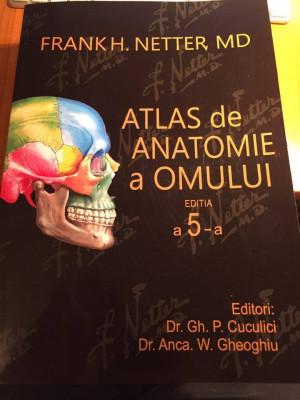 Atlas de Anatomie a Omului F.H. Netter editia a 5-a Romana foto