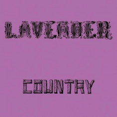 Lavender Country - Lavender Country -Ltd- ( 1 VINYL ) - Muzica Country