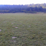 Teren - Teren de vanzare, 18200 mp, Teren extravilan
