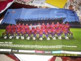 Poster   Steaua  2008-2009