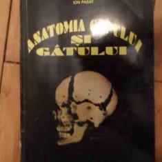 Anatomia Capului Si Gatului - Ion Pasat, 535957