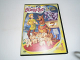 Ce mai e nou Scooby-Doo?, DVD Warner Bros, volumul 5!, Romana, warner bros. pictures