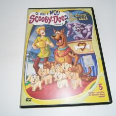 Ce mai e nou Scooby-Doo?, DVD Warner Bros, volumul 5! - Film animatie warner bros. pictures, Romana