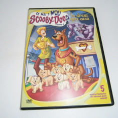 Ce mai e nou Scooby-Doo?, DVD Warner Bros, volumul 5! - Film animatie warner bros. pictures, Romana