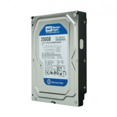 Hard Disk 250GB WESTERN DIGITAL, SATA2, 7200rpm, WD2500AAJS Blue, 100%OK!, 200-499 GB, 8 MB