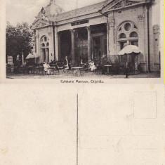 Basarabia, Moldova - Chisinau- Cofetaria Manicov - rara - Carte Postala Moldova 1904-1918, Necirculata, Printata