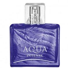 Apa de toaleta Aqua Intense Avon 75 ml - Parfum barbati Avon, Acvatic
