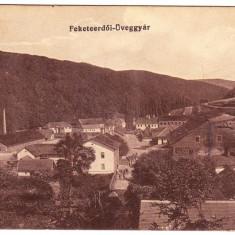 Padurea Neagra, Feketeerdoi -Uveggyar Fabrica de sticla j.Bihor ilustrata 1917 - Carte Postala Crisana 1904-1918, Circulata, Printata