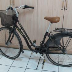 Bicicleta de oras Ideal City Life, carte tehnica., 19 inch, 18 inch, Numar viteze: 3