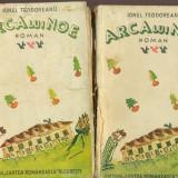 Arca lui Noe - Ionel Teodoreanu - vol.1 si 2