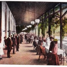 Felix Oradea, Felixfurdo ilustrata postala animata, RARA circulata in 1919 - Carte Postala Crisana 1904-1918, Printata, Baile Felix