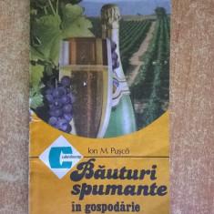 Ion M. Pusca - Bauturi spumante in gospodarie