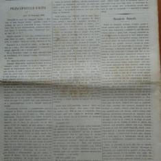 Ziarul Steoa Dunarei, Zimbrulu si Vulturulu ; Steaua Dunarii, nr. 24, 1860