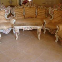 Mobila Salon Sculptat Vintage Deosebit