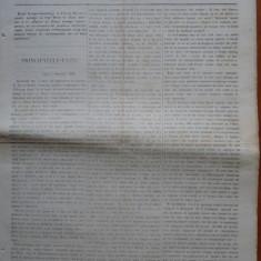 Ziarul Steoa Dunarei, Zimbrulu si Vulturulu ; Steaua Dunarii, nr. 21, 1860