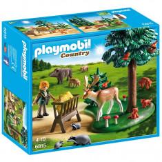 Teren impadurit si animale Playmobil