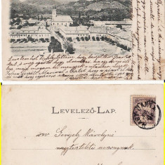 Baia Mare - clasica 1900, rara - Carte Postala Maramures pana la 1904, Circulata, Printata