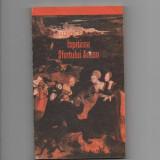 Ispitire Sfintului Anton - Gustave Flaubert - Roman