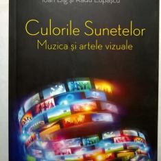 I. Big, R. Lupascu - Culorile sunetelor - Carte Cinematografie