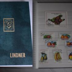 TS051 Clasor cu timbre tematic Flora A4 nou
