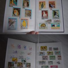 TS056 Clasor Nou a5 Cu timbre tematica Fauna