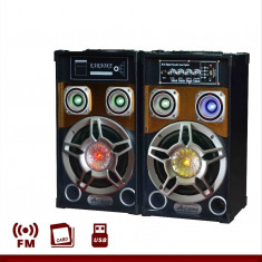 BOXE AMPLIFICATE ,SISTEM KARAOKE,STICK/CARD,EFECTE VOCE,MIXER,BONUS 2 MICROFOANE