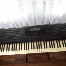 Vand Orga Roland G 800