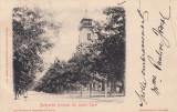 BULEVARDUL PRINCIPAL DIN LACUL SARAT EDITURA J.GHEORGHIU&CO , BRAILA , CIRC.1905