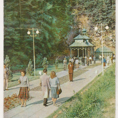 Bnk cp Slanic Moldova - La izvoare - circulata - Carte Postala Moldova dupa 1918, Printata