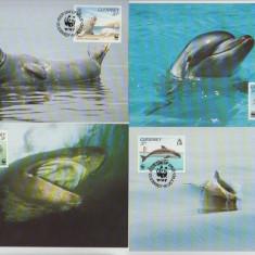Guernsey 1990 - fauna marina, serie maxima