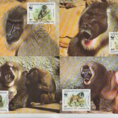 Camerun 1988 - maimute Drill, serie maxima