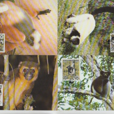 Madagascar 1988 - lemuri, serie maxima
